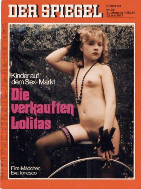 Der Spiegel, Nr. 22, 1977